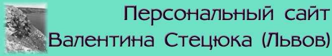Логотип персонального сайта В.М.Стецюка